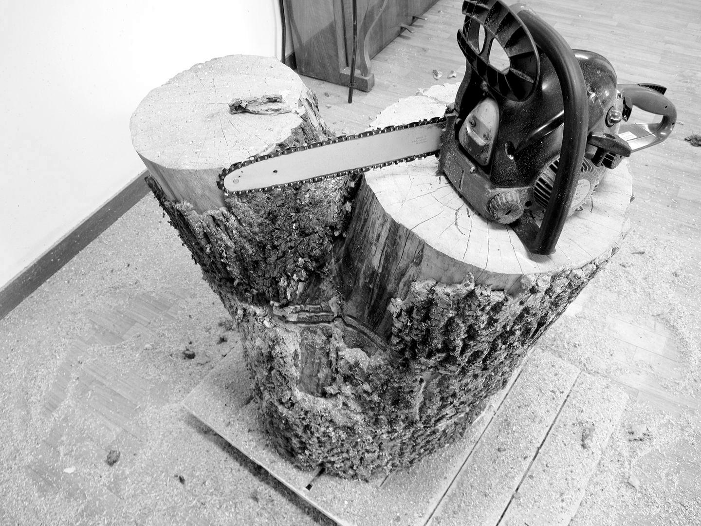 projekt-drzewo-wip-01